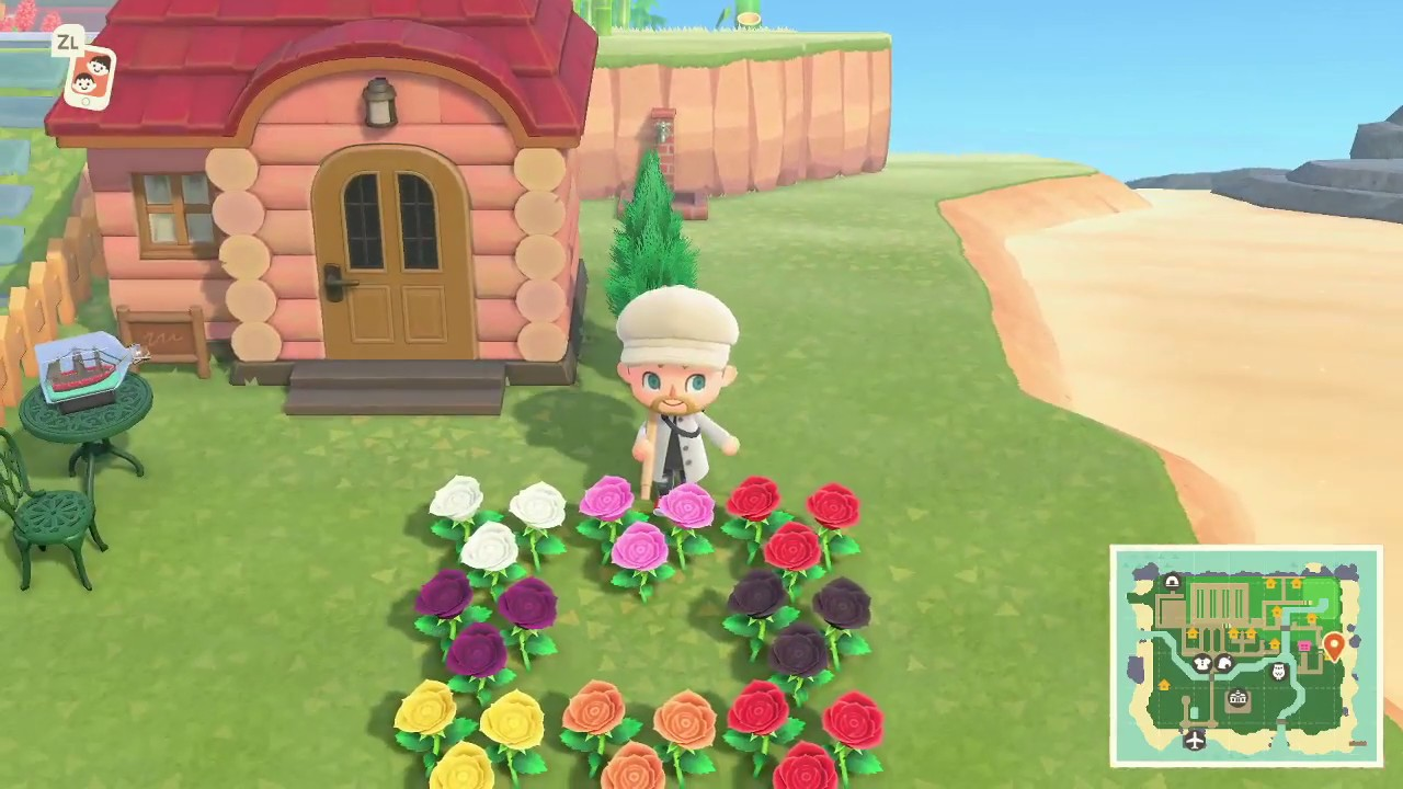 Animal Crossing: New Horizons come ottenere rose blu